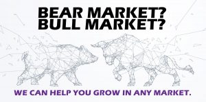 Bear-Bull-Consulting-We-can-help-you-grow-your-sale-and-retain-more-salepeople-in-any-market